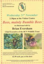 Bees, mainly Bumble Bees illustrated talk